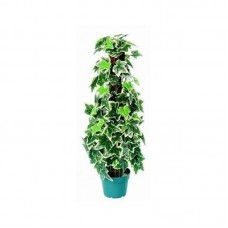 Artificial plant - Shelly BELOW COST